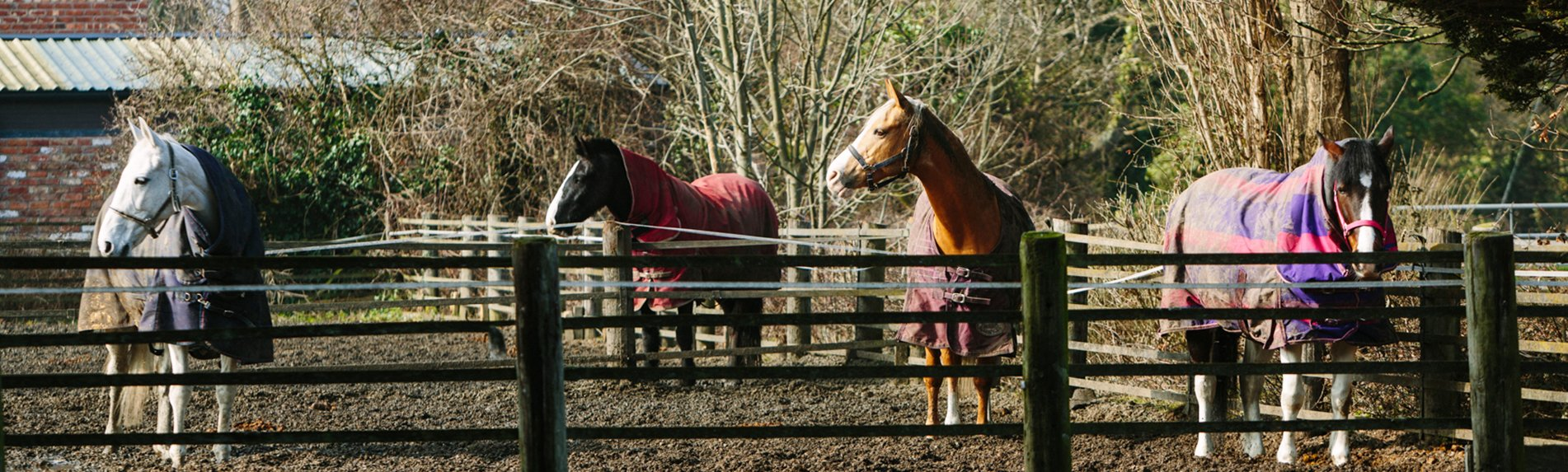 Larton Livery Horse Stables & Turnout